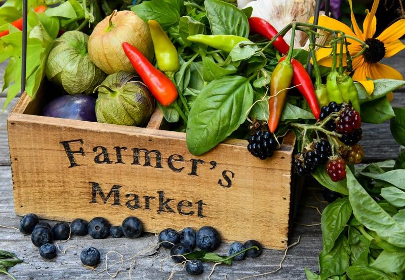 Farm Fresh food from Las Cruces, NM
