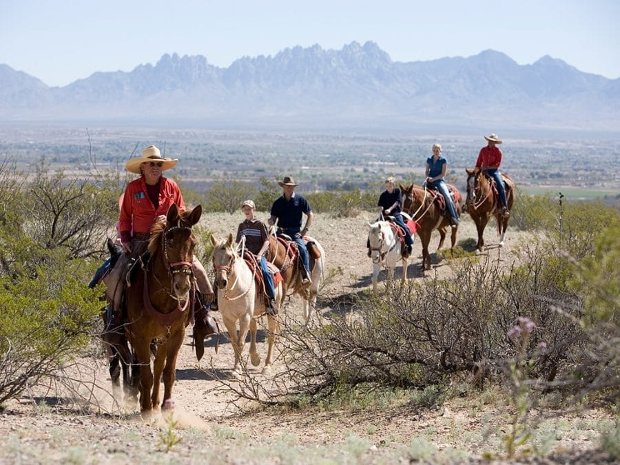 Picacho_Mountain_Horse_Trails